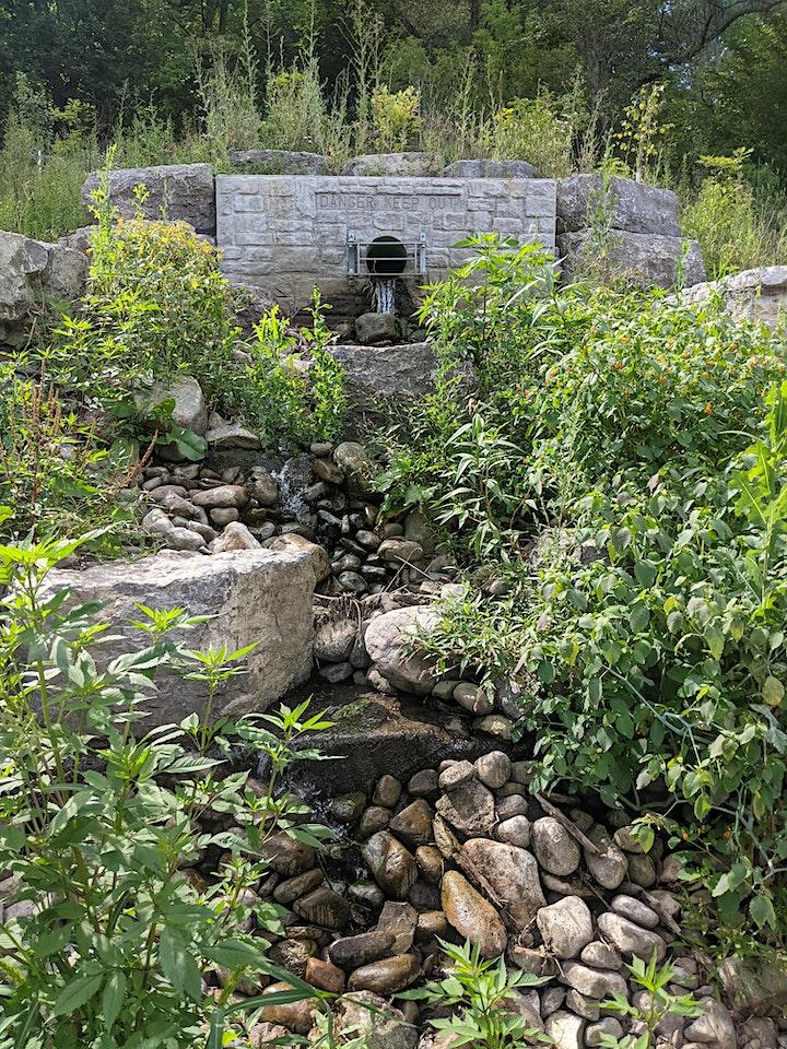 Mud Creek Walk: Eglinton Park to Evergreen Brickworks image