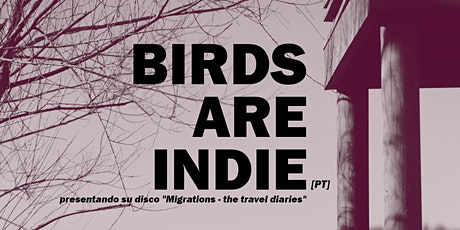 BIRDS ARE INDIE entradas