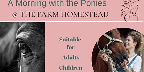 A Morning or Afternoon with the Pony's.  Homestead For Youth tickets