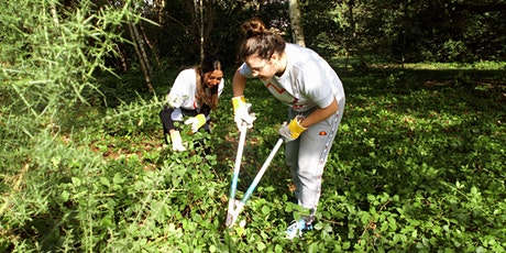 Hatherop Park Shrub Clearing- Practical Conservation Activity tickets