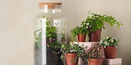 Create your own Terrarium Workshop with Green & Wild tickets