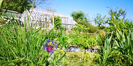 STAA Wednesday Volunteering @ The Heritage Display Garden ('Olivers') tickets