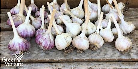 Annual Garlic Planting tickets