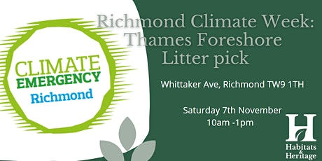 Richmond Climate Week: Draw Off Litter Pick 2021 tickets