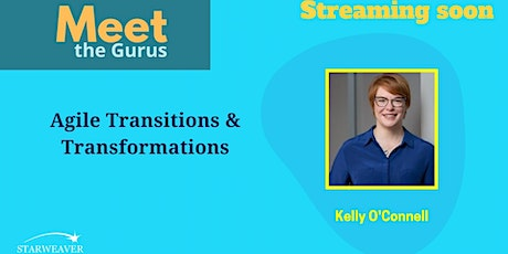 Agile Transitions and Transformations tickets