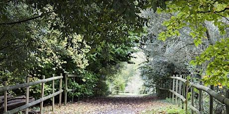 Wellbeing Walk at Cobtree Manor Park tickets