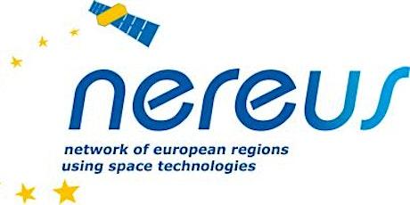 NEREUS: Meeting of the   Schools&Satellite group tickets