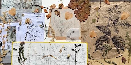 Encampment of Eternal Hope - Botanical Illustration Workshop tickets
