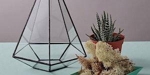 West Elm & geo-fleur Terrarium Workshop