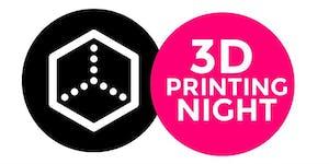 3d Printing Night -24 Novembre 2015
