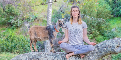 Baby Goat Yoga Sound Bath in Nature tickets