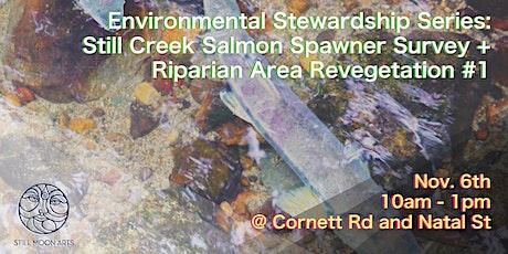Environmental Stewardship Series - Still Creek Salmon Spawner Survey #1 tickets