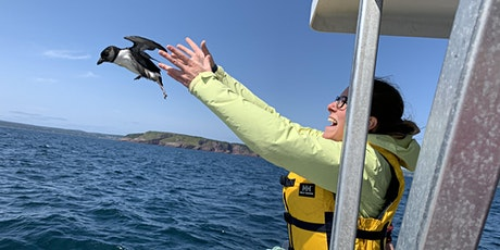 October Guest Speaker Taylor Brown: Studying Seabirds in Newfoundland tickets