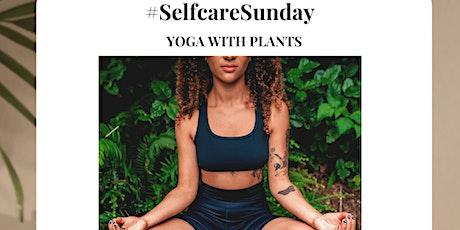 Plant Shop Yoga tickets