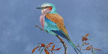A Lifetime Illustrating Birds tickets