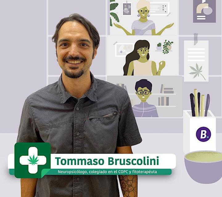 Imagen de Consultorio online gratuito: Usos médicos con cannabis