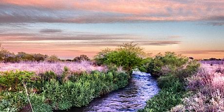 Sonoran Institute - The Santa Cruz River Program tickets