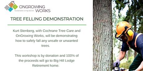 Tree Felling Demonstration tickets