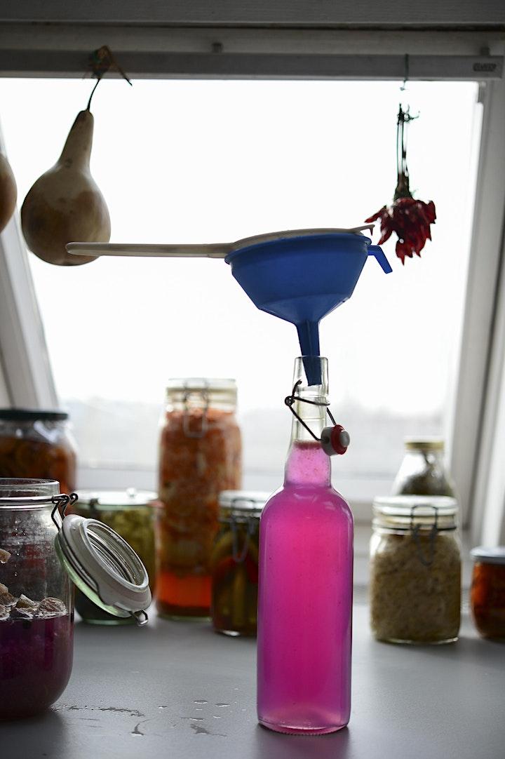 Kombucha & Water Kefir Workshop image