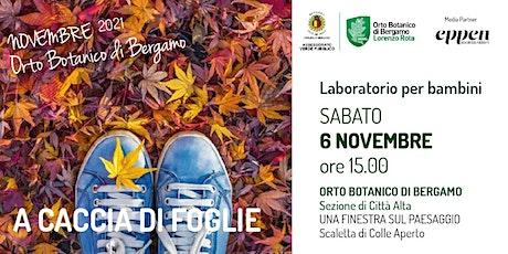 A caccia di foglie! biglietti