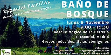 Baño de Bosque en familia lun. 8 Nov - Otoño Bosque La Herrería El Escorial entradas