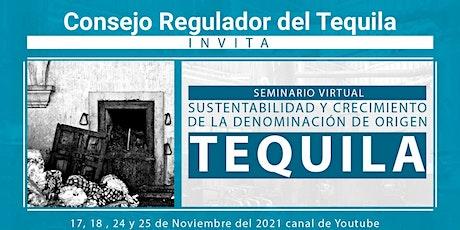 Sustentabilidad y crecimiento de la Denominación de Origen Tequila. entradas