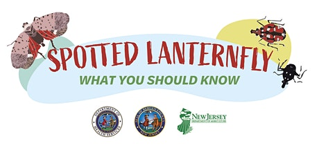 Spotted Lanternfly: What You Should Know tickets