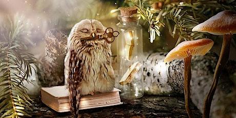 Monstruos y criaturas mágicas guardianes de libros entradas