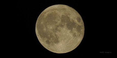 "November 19   4:30 – 6:30 pm   Full Moon Hike: ""Beaver Moon"" tickets"