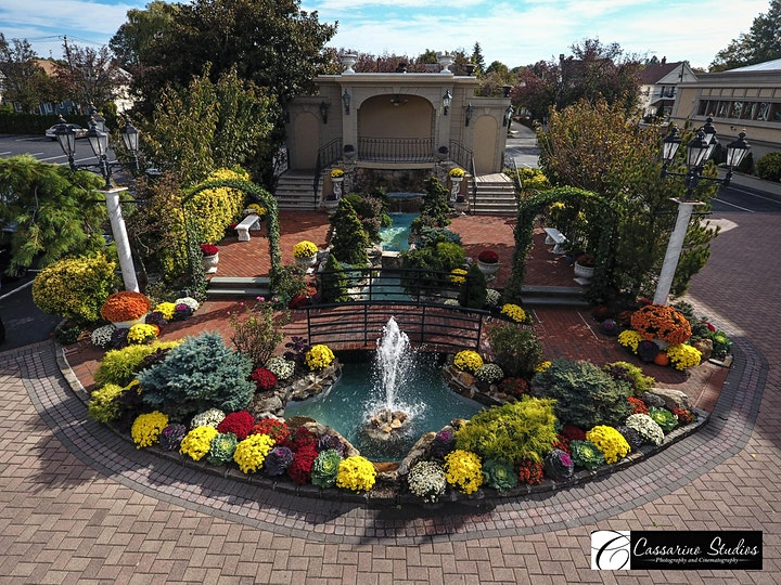 Jericho Terrace Apple of My Eye Fall Showcase image
