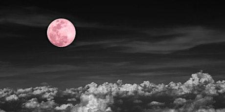 Sound Healing Journey,  Gong Bath (Full Moon 'Pink Moon') tickets