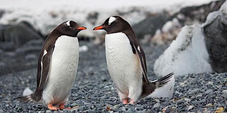 地球居民手册第三章:南极大陆生活日记 『湾区文化沙龙活动预告』 tickets