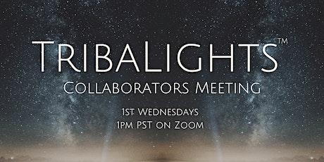 TribaLights Collaborators Meeting tickets