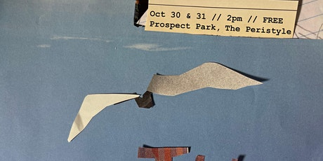 The Seagull - Brooklyn, NYC tickets
