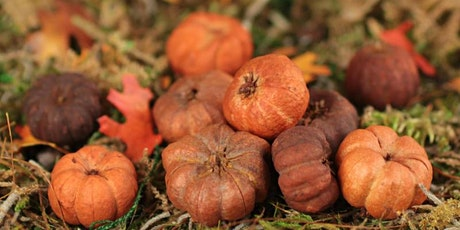 Adults Only Central Park Mini Pumpkin Scavenger & History Hunt tickets