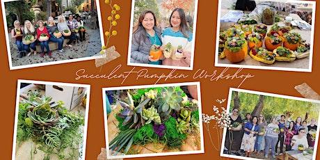 Creative Women's Group - Annual Succulent Pumpkin Workshop (Livermore) tickets