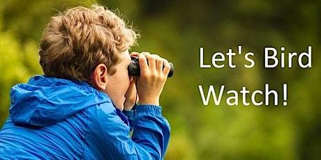 Let's Walk- Identifying Conifers tickets