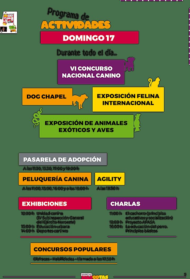 Imagen de VI ESPACIO MASCOTAS  -2021-