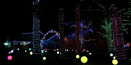 2021 Ice & Lights: The Winter Village at Cameron Run tickets