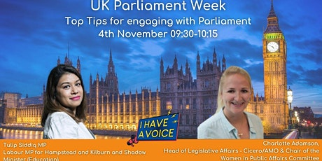 Top tips for engaging with Parliament tickets