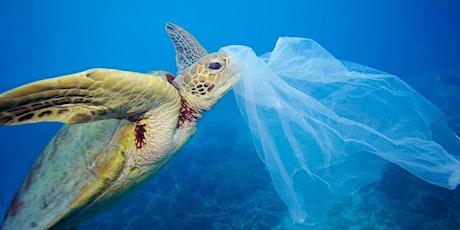 Investor Webinar For The Next Generation of Biodegradable Plastics EIS tickets
