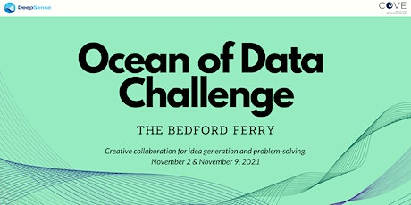 Ocean of Data Challenge: The Bedford Ferry tickets