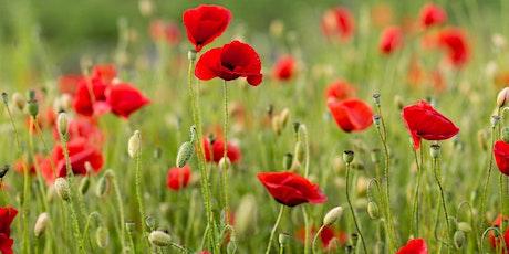 "Chestermere Veterans ""Memorial Walk ""Grand Unveiling Event tickets"