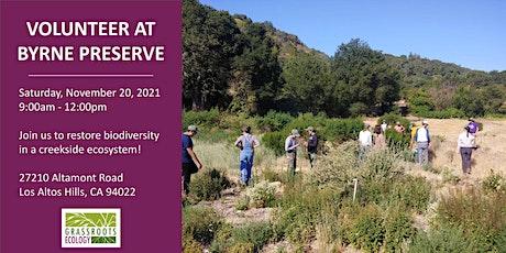 Volunteer Outdoors in Los Altos Hills: Habitat Restoration @ Byrne Preserve tickets