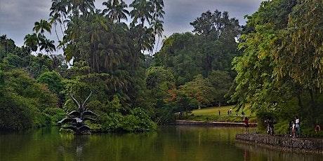 Garden in a City - Singapore Botanic Gardens Stroll tickets