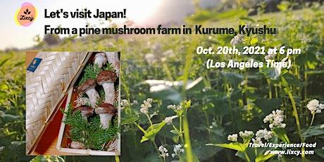 Fall Live Tour from Japan, Pine mushroom farm in Kurume, Kyushu, Japan tickets