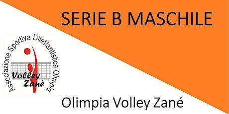 Olimpia Zané VS Volley Treviso - Serie B maschile, girone D, 2^giornata tickets
