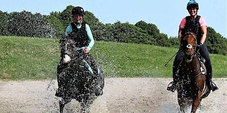 Aspire Rider Confidence/Peak Performance Camp tickets