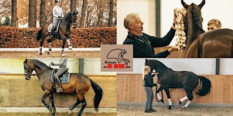 Bewegingsleer van het paard door Jarko Dun & Kelly De Geus tickets