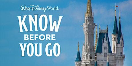 Disney Planning Made Easy Webinar tickets
